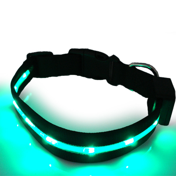 LED pet collar 026<br><img src='/upfile/product/20120204081335.jpg' onload='javascript:DrawImageim(this);' />