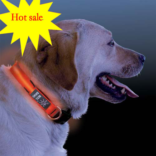 LED pet collar 025<br><img src='/upfile/product/20120204081628.jpg' onload='javascript:DrawImageim(this);' />