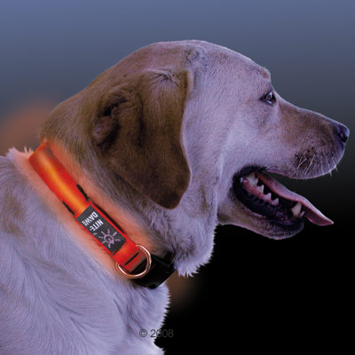 LED pet collar 020<br><img src='/upfile/product/20120204082403.jpg' onload='javascript:DrawImageim(this);' />